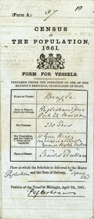 A pre-printed form on a narrow strip of paper with handwriting filling pre-printed boxes. This is an example of a census form for vessels. This one was used for the 1861 census to record the crew of the HMS Beagle (catalogue reference RG 9/1085).