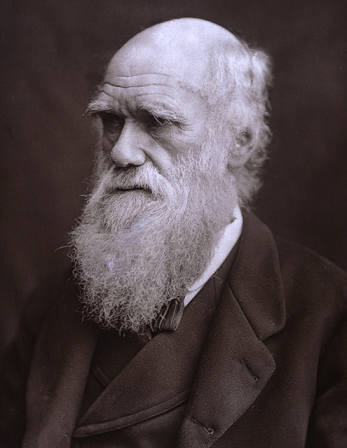 A photographic portrait of Charles Darwin, 1882. He is shown from the chest up, dressed in a waistcoated suit.